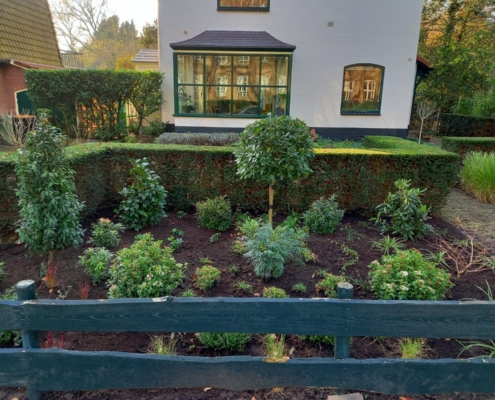 Tuinbeplanting en tuinonderhoud Driehuis